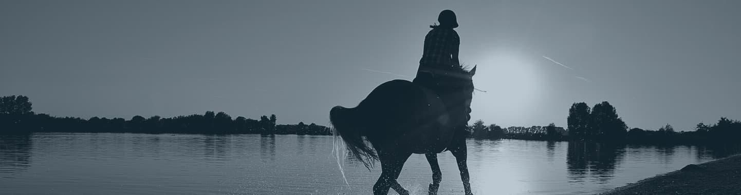 jahanje konja zelengora sutjeska