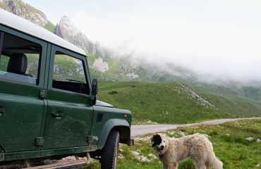 jeep safari national park sutjeska